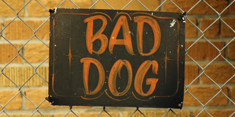 Dog warning sign
